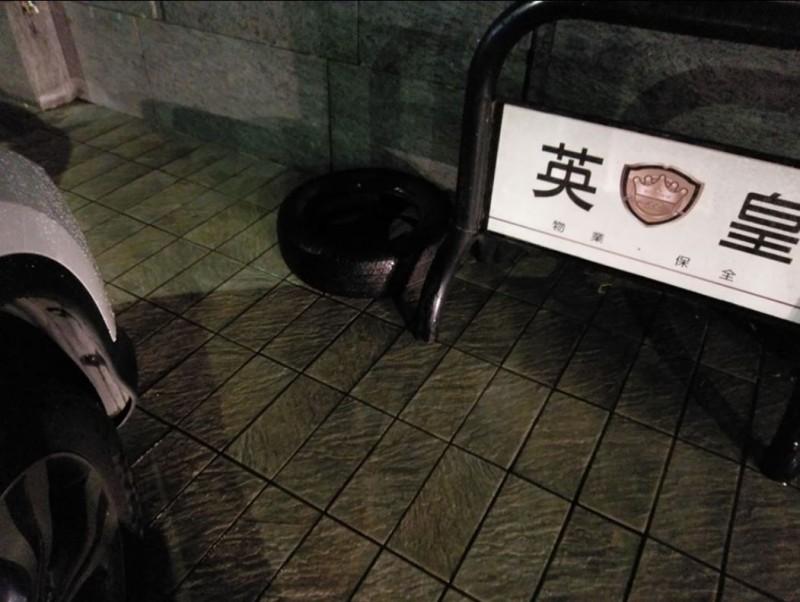 原PO拍下被誤認成黑狗的輪胎,沒仔細看還真的有幾分相似。(圖擷自爆廢公社)