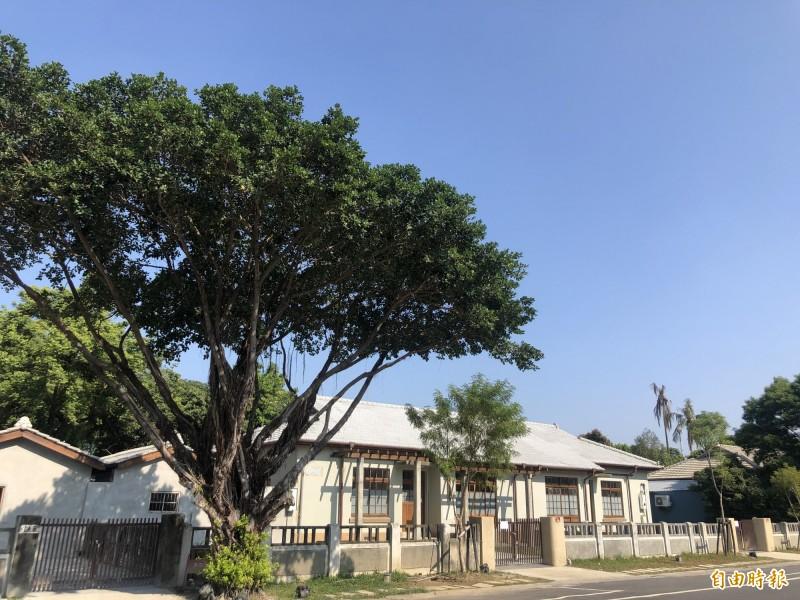 屏東縣政府致力保留並修復屏東市區大量的日式眷舍群。(記者羅欣貞攝)