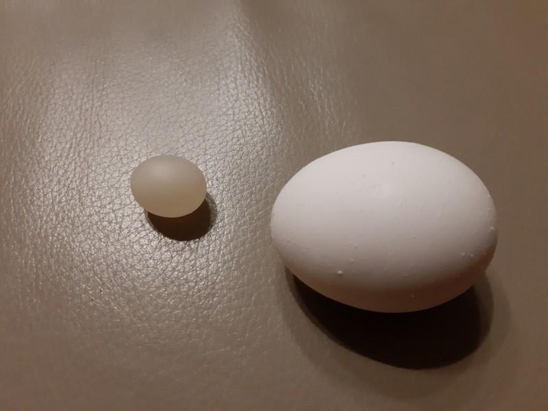 民眾晚間在家打蛋,發現裡面竟有1顆「迷你蛋」。(圖取自爆廢公社)