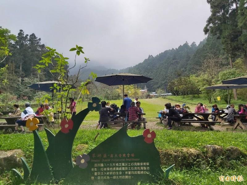 2020年共有6次3天以上連假,民眾可以好好規劃旅遊行程,圖為溪頭自然教育園區。(記者張協昇攝)