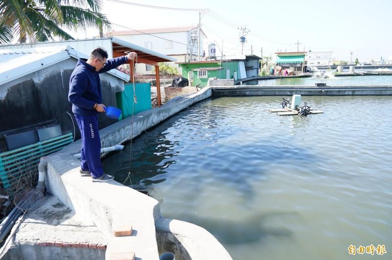 販運商又惡意跳票,漁民向政府陳情。(記者陳彥廷攝)