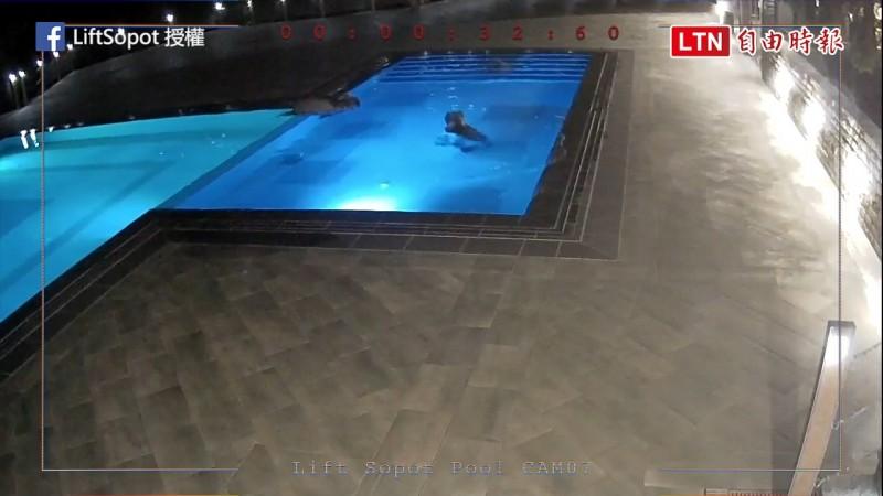 熊在無人泳池中相當開心的戲水(圖片由臉書粉專LiftSopot授權提供使用)
