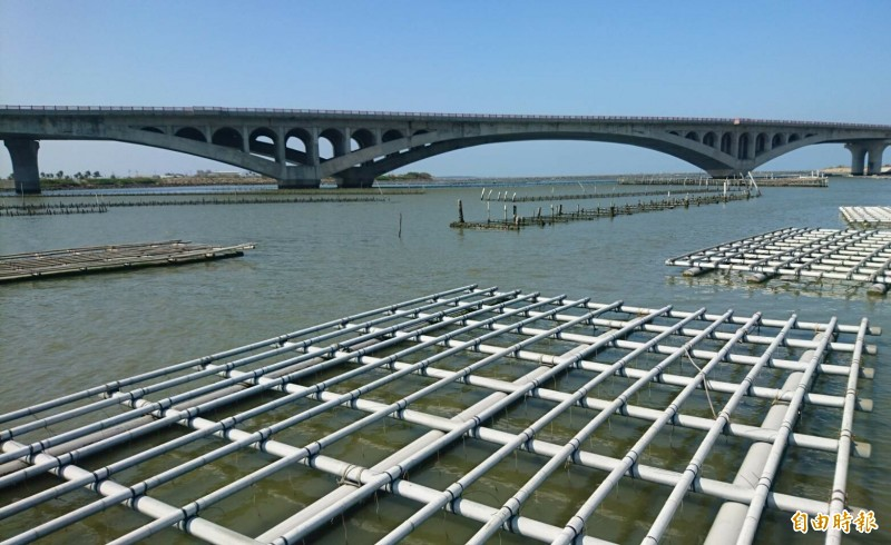 PVC塑膠管蚵架和後方傳統浮坪、垂掛式蚵架。(記者楊金城攝)