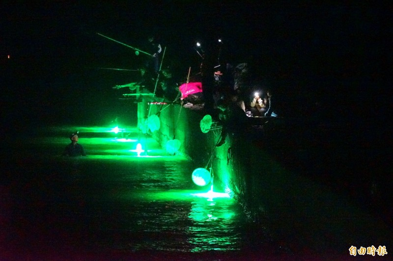 高屏沿海鰻苖大出,近期夜間沿海非常熱鬧。(記者陳彥廷攝)