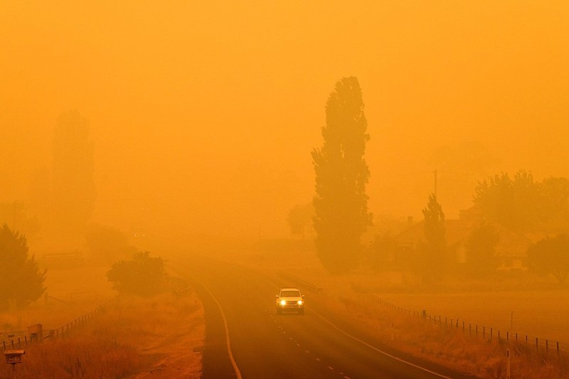 Vehicles travel on a road through thick smoke from bushfires in Bemboka, Australia, yesterday. Photo: AFP