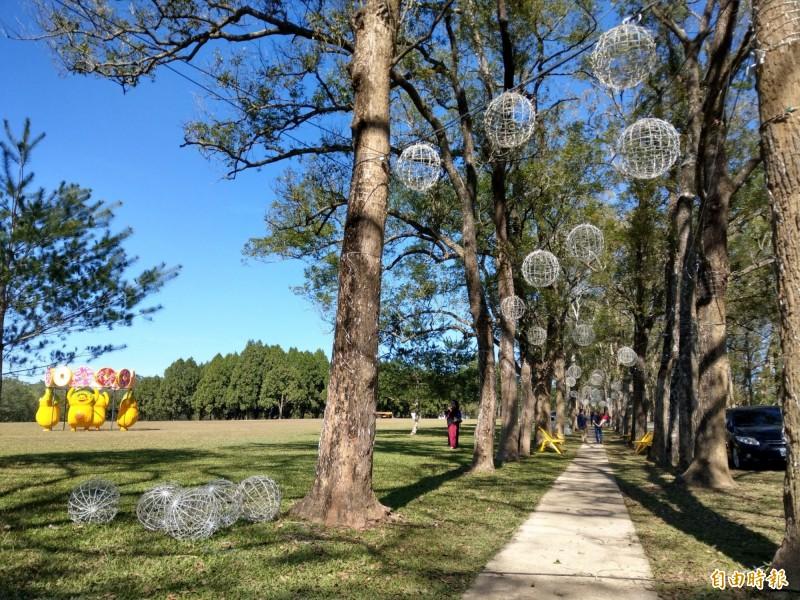 魚池鄉公所在三育基督學院舉辦燈會,盼藉綠樹草皮環境,打造「森林燈會」氛圍。(記者劉濱銓攝)
