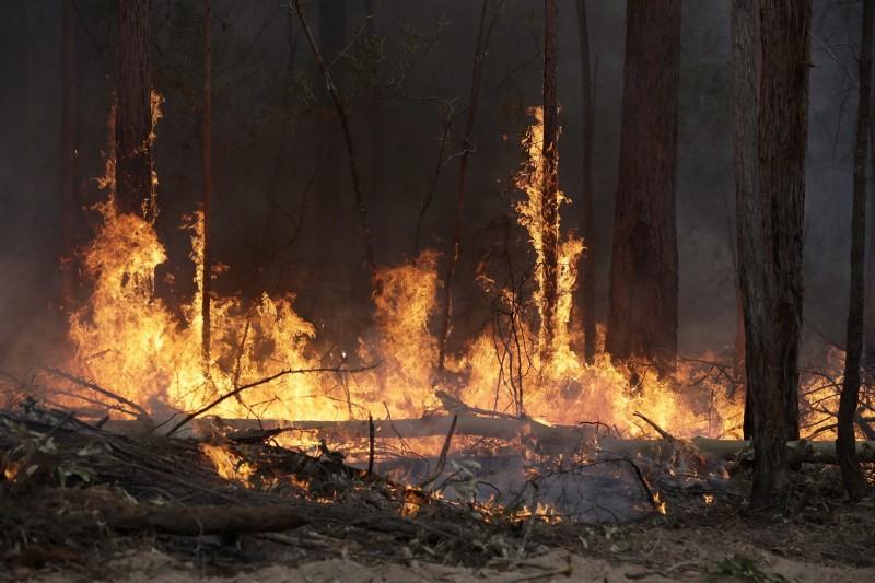 澳洲野火所竄出的濃煙,預計將會影響全球。(美聯社)