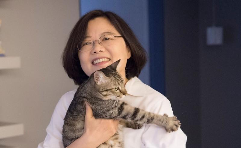 總統蔡英文愛貓的形象深植人心,被網友封為「貓英大統領」,澳媒最近也引用這個典故,封她為「鋼鐵貓夫人」(Iron cat lady)。(圖擷取自蔡英文臉書)