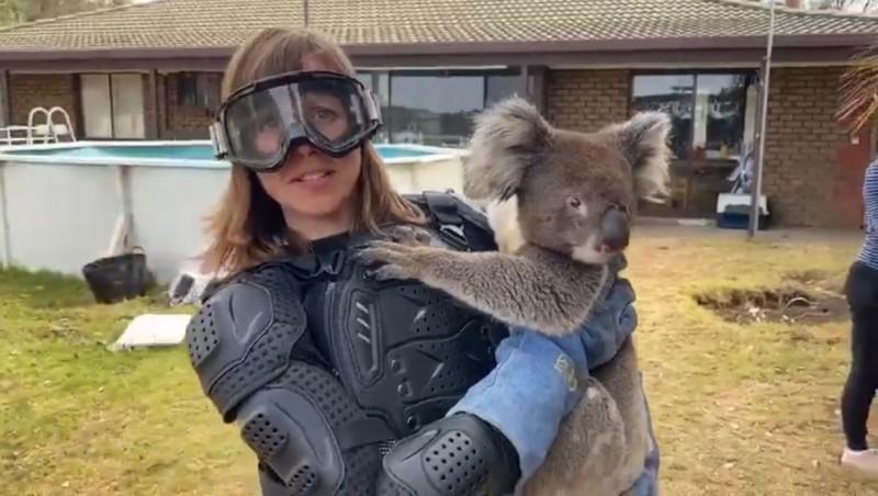 英國獨立電視台(ITV)亞洲記者愛德華(Debi Edward)到澳洲袋鼠島採訪無尾熊專題,工作人員騙她無尾熊中有一種「掉落的熊」,會從樹上掉下攻擊人類,要她先穿上全套防護衣。(圖擷取自臉書Sean Mulcahy)