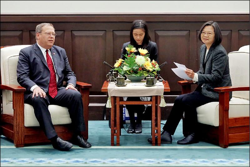 蔡英文總統(右)昨接見CSIS訪問團。左為訪團成員前美國駐港澳總領事唐偉康。(中央社)