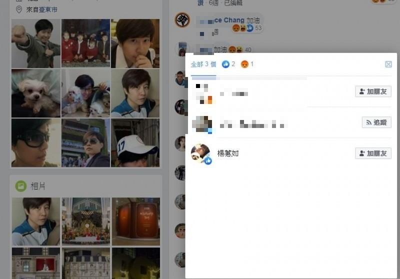 在蔡英文總統創紀錄高票當選後,一名網友在她臉書留言表示「蔡英文大勝」,引楊蕙如現身,悄悄按了一個讚。(擷取自臉書)