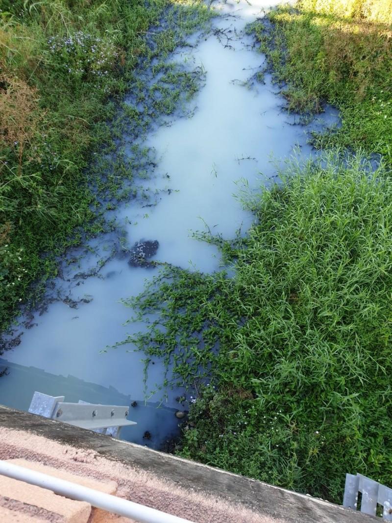 大里頭汴坑溪今天出現白色污水,環保局採樣檢測成分(記者蘇金鳳翻攝)
