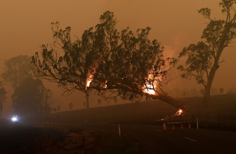 澳洲野火自去年9月燒到現在。(路透)