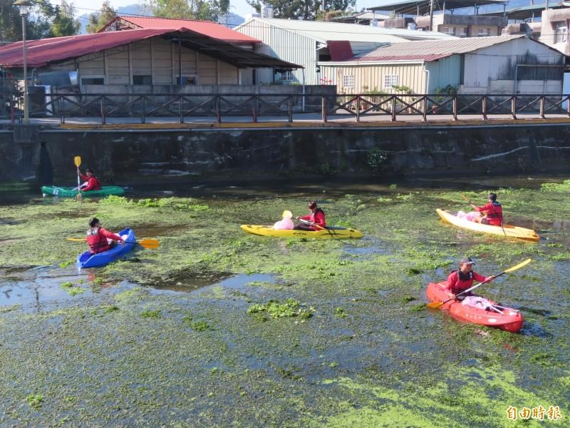 暨大划船隊選手分乘5艘開放式獨木舟下水,清除杷城排洪道水面的垃圾。(記者佟振國攝)