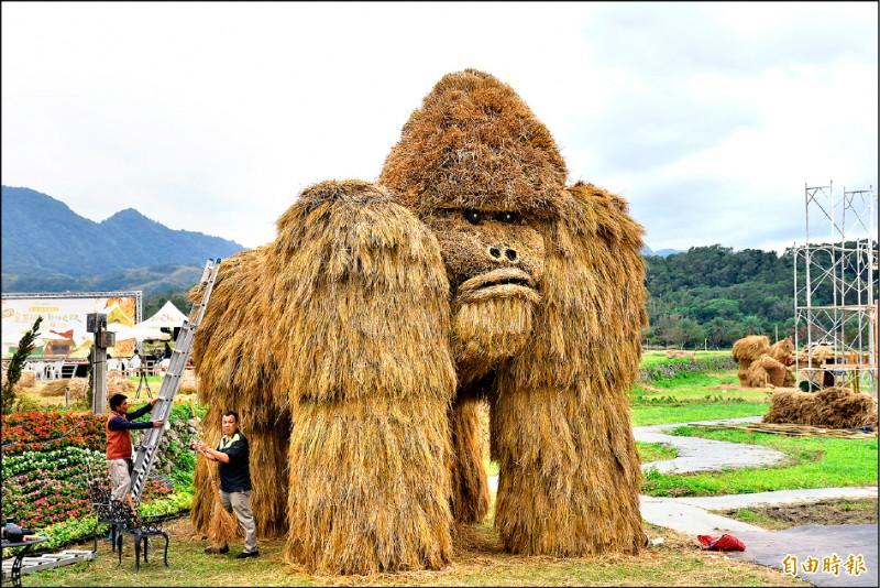 富里鄉最大的稻草動物「銀背猩猩」成遊客新興打卡點。(記者王峻祺攝)