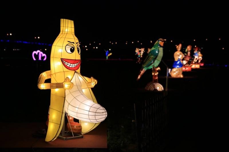 南投燈會在會展中心盛大展開,位在花海燈區的香蕉哥花燈,因「突出」外型讓人看得好害羞。(記者劉濱銓翻攝)
