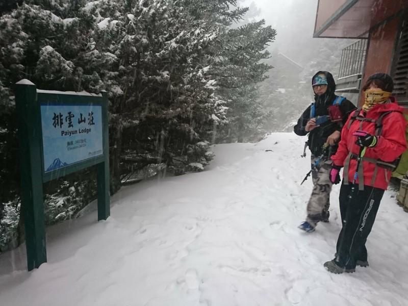 玉山國家公園塔塔加迄排雲山莊也都因大雪紛飛,呈現北國風情。(記者謝介裕翻攝)