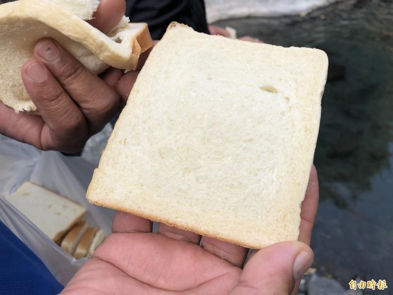 居民請麵包店特製無油、無添加的麵包餵魚。(記者許麗娟攝)