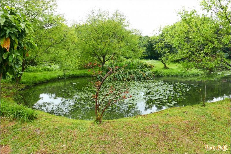中和區「漳和濕地」為新北市首座都會型人工濕地,現況因經費短缺封園中。(記者翁聿煌攝)