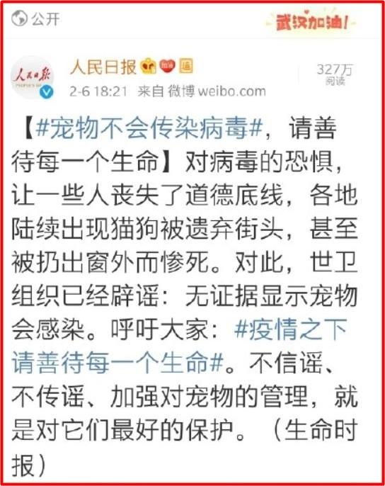 中國官媒先前公開呼籲,疫情傳播與寵物無關。(圖取自微博)