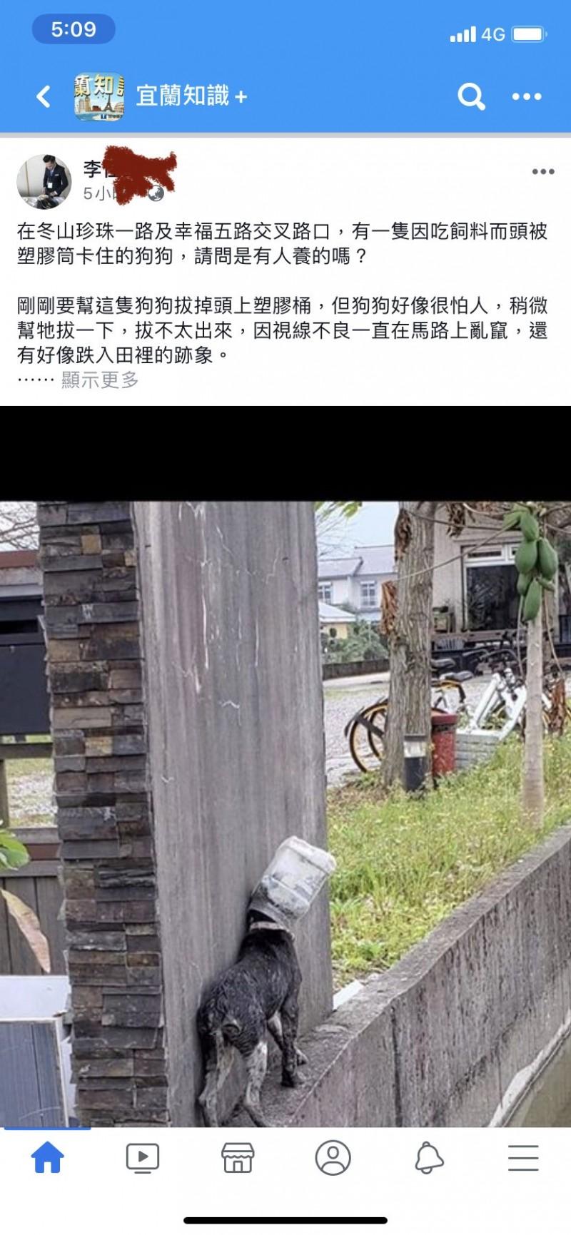 宜蘭冬山鄉一隻流浪狗頭被塑膠筒卡住,宛如帶了個「太空面罩」,有網友見狀,擔憂狗的安危,將相片PO網為狗求援。(翻攝自宜蘭知識+)