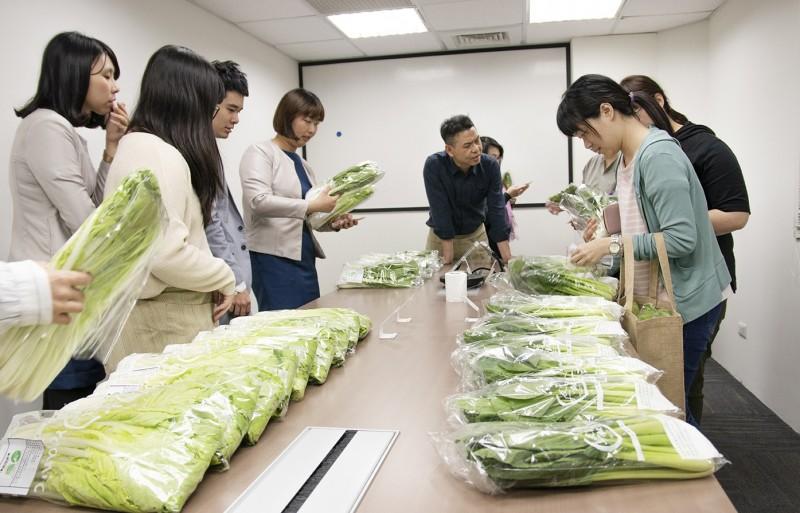 台南老爺行旅員工團購有機蔬菜,協助農民度過短暫無法出貨的問題。(記者王姝琇翻攝)