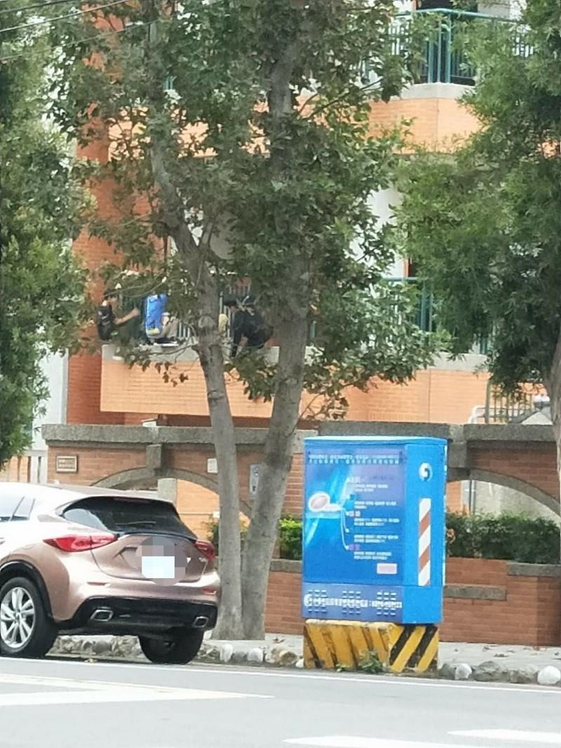 好危險,還沒開學,學生竟攀牆翻進校園。(取自臉書社團竹南大小事)