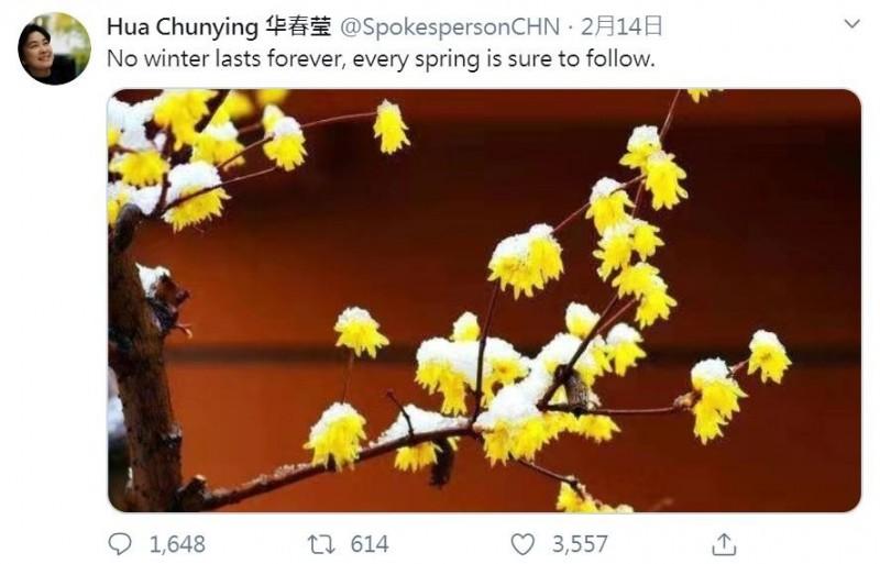華春瑩的推特帳號在西洋情人節2月14日正式開通,當天就用英文發出首推,「No winter lasts forever, every spring is sure to follow.」(沒有一個冬天不可逾越,沒有一個春天不會到來)。(圖擷取自推特)
