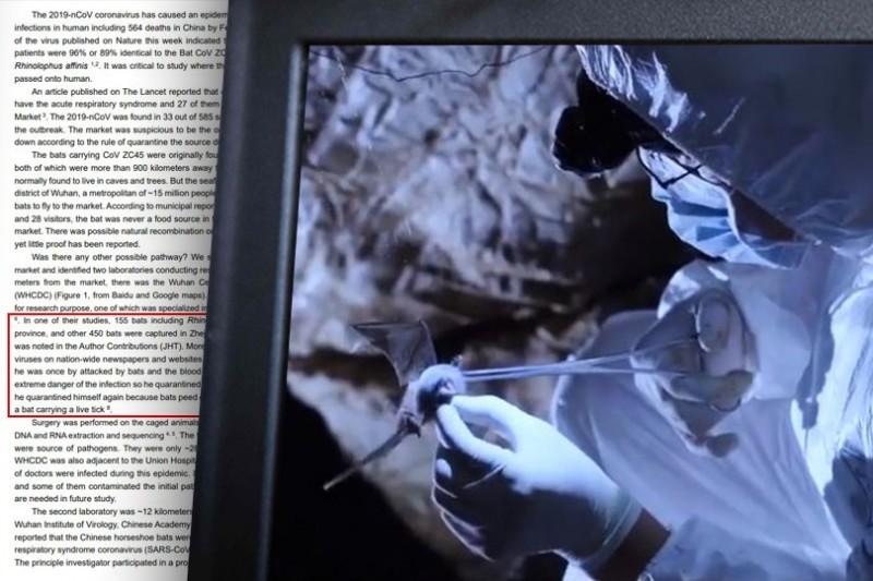 港媒報導,中國學者曾發表報告,指稱武漢市疾病預防控制中心恐為病毒來源。(本報合成)
