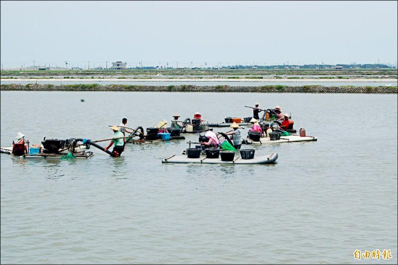 雲林縣農業處提醒養殖業者做好防寒工作。(資料照,記者林國賢攝)