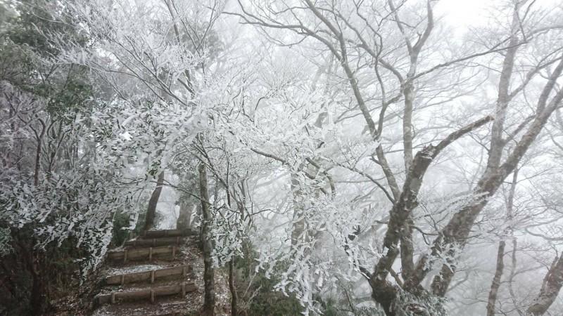 園區降到零下2度。(記者江志雄翻攝)