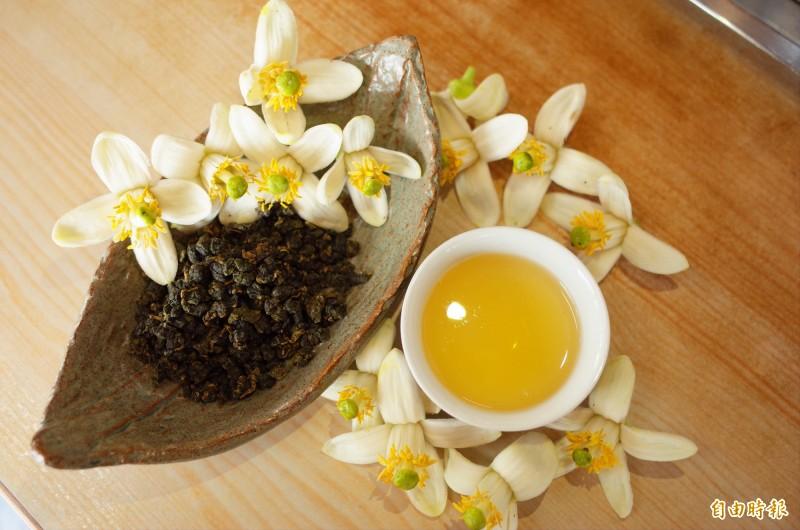 花蓮柚花季提早報到,2月中就有花兒盛開,農民搶早炮製柚花茶,芬芳氣味特別迷人。(記者花孟璟攝)