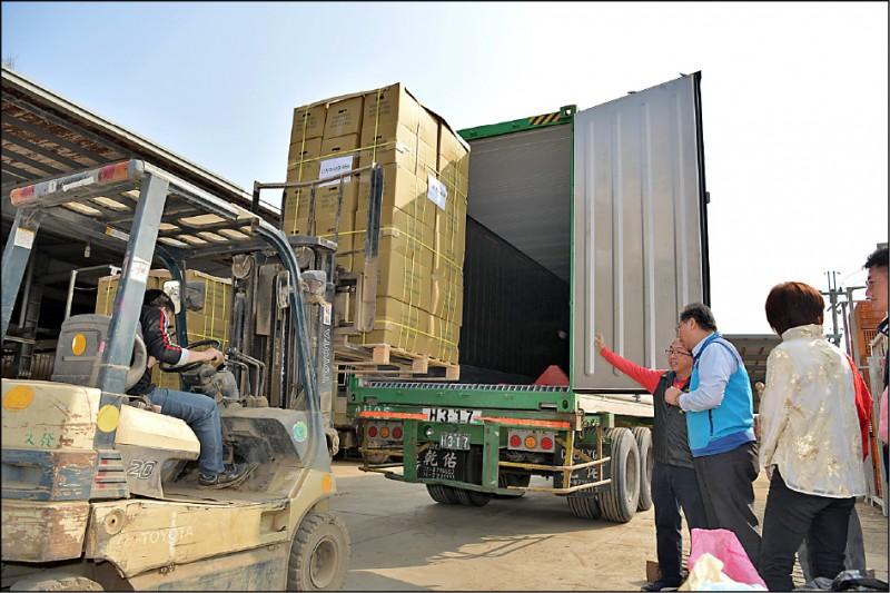 南投名間鄉十七噸生薑昨裝上貨櫃銷往美國。(記者劉濱銓翻攝)