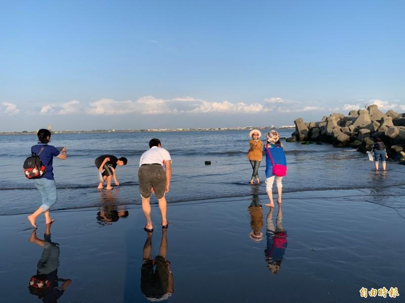 汕尾海灘睽違10年又出現大量馬珂蛤,民眾體驗「摸蛤兼洗褲」。(記者洪臣宏攝)