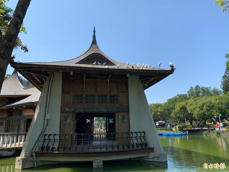 台中公園百年湖心亭上停滿了鴿子,有人說美,但鴿糞卻危及古蹟。(記者唐在馨攝)