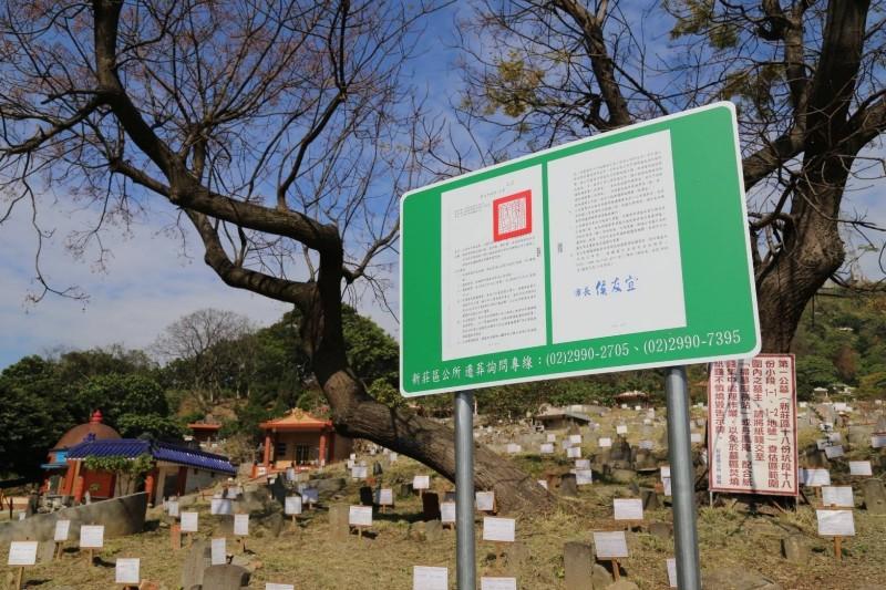 新莊第一公墓現況,上月已公告遷葬。(新莊區公所提供)