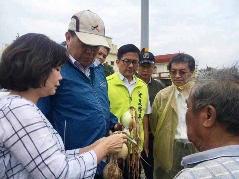 立委蘇震清(左二)勘查洋蔥受災狀況。(記者蔡宗憲翻攝)