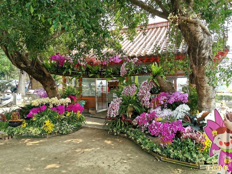 國際蘭展改採「遍地開花」策略,台南市政府推出3條賞蘭遊程。(記者吳俊鋒攝)