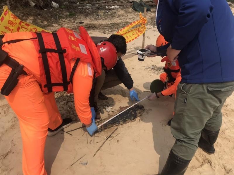 金門岸巡隊在金沙鎮海山美岸際發現一隻雌體幼豚屍體,正對助體進行量測。(金門岸巡隊提供)