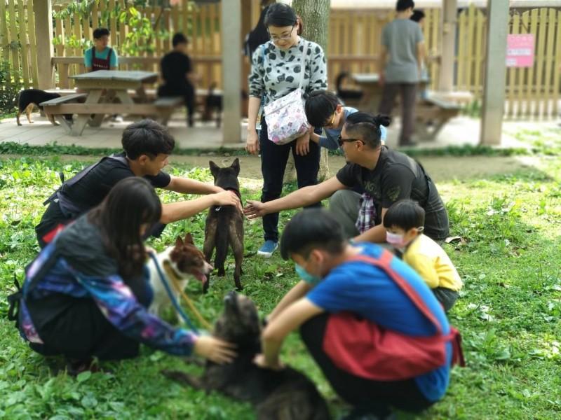 青年志工在假日引導親子與動物友善互動。(動保處提供)