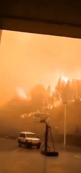 西昌農業學校外的樹林著火,火勢相當驚人。(圖取自微博)