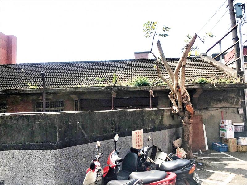 有百年歷史的「柑仔會社」,議員陳雅倫建議列入歷史建築。 (市議員陳雅倫提供)