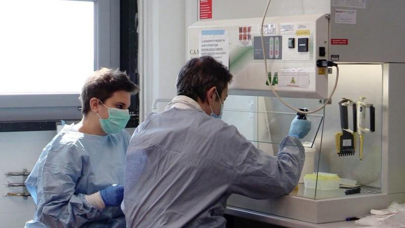 根據《雪梨晨驅報》報導,由莫納什生物醫學研究所(Monash Biomedicine Discovery Institute)領導的研究發現,傳統用於對付頭蝨等寄生蟲的伊維菌素(ivermectin)在使用高劑量的情況下,可有效阻止武漢肺炎病毒在細胞培養皿中生長。(歐新社示意圖)
