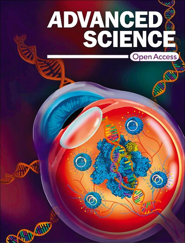 台美科技合作基因編輯修補先天性視網膜裂損症獲突破,研究成果登上先進科學期刊。 (研究團隊提供)