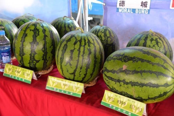 二崙西瓜節碰上武漢肺炎,民眾到自強市場FB打卡送西瓜。(記者詹士弘翻攝)