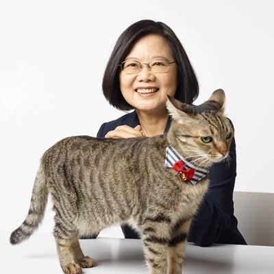 近來,日本當代藝術家奈良美智因一則向台灣總統致謝贈與口罩的推特貼文,意外製造了總統蔡英文與交通部長林佳龍在推特上的交流。(圖擷取自推特)
