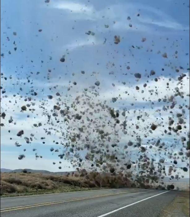 有位美國記者日前駕車,突有數不清的「風滾草」襲來,他趕緊拍下這驚人的畫面並上傳到Twitter上,觀看次數馬上破百萬,引發網友熱烈討論。(翻攝自Twitter)。