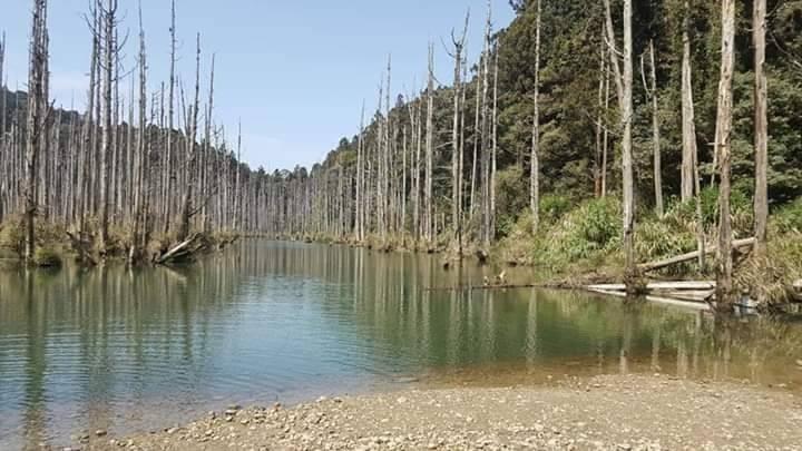 水漾森林景色雅致,吸引不少人朝聖,但一再傳出山友受傷事件,救援任務十分艱辛。(許銘宏提供)