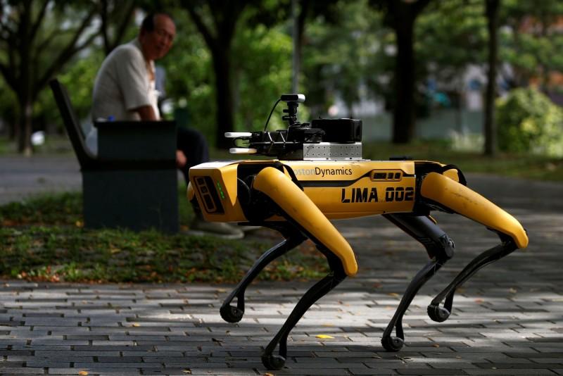 圖為5月8日,新加坡當局展開一項讓機器狗「Spot」在公園巡邏的測試項目。(路透)