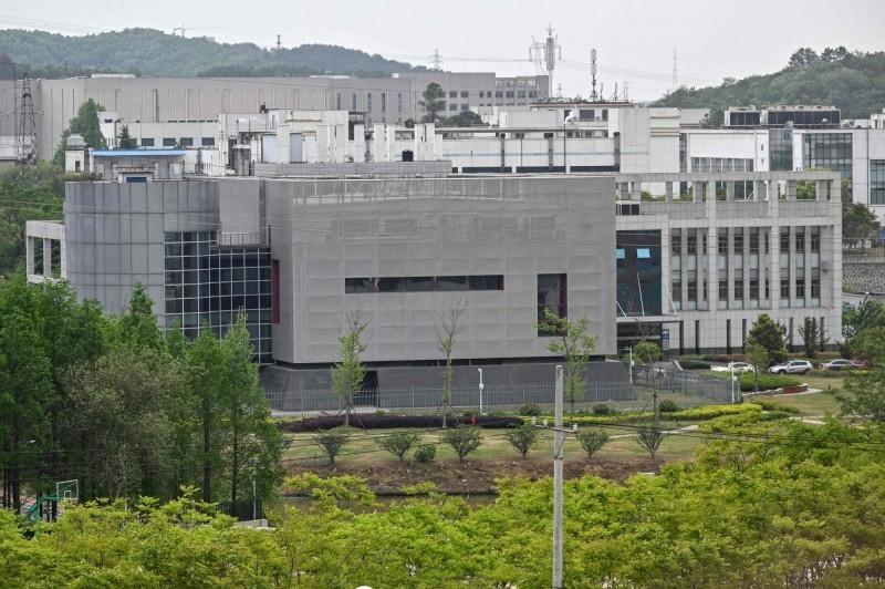 武漢病毒研究所的P4實驗室。(法新社)
